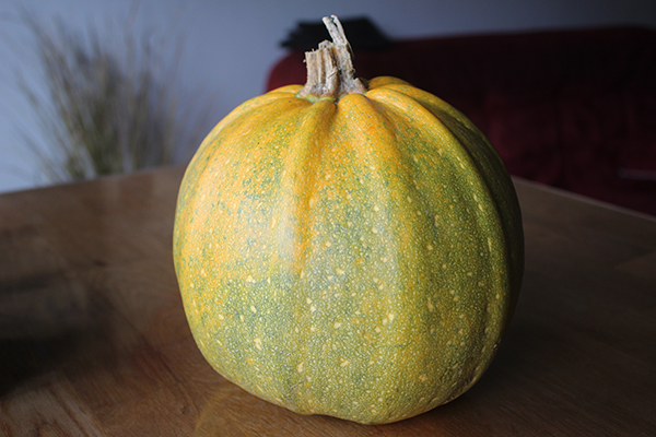 Pumpkin – a winter dose of immunity