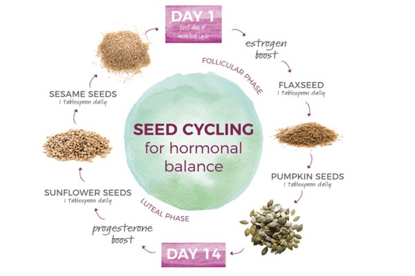 What seed cycling is?
